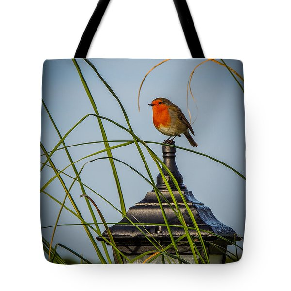 Irish Robin Perched On Garden Lamp Tote Bag