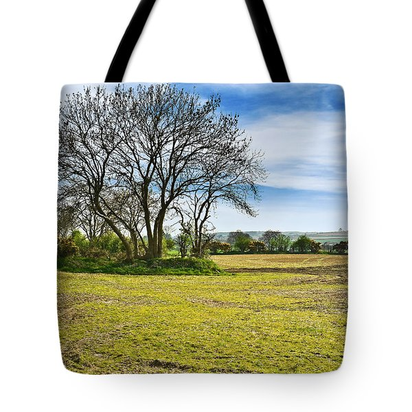 Tote Bag featuring the photograph Irish Springtime by Jane McIlroy