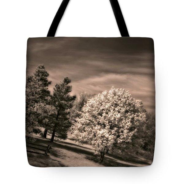 ...is But A Dream Tote Bag by Steve Harrington