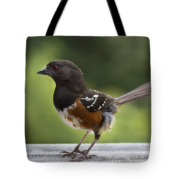 Is Cecil Around Tote Bag by Jean Noren