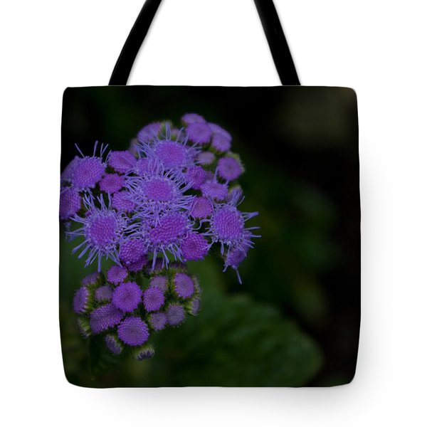 Tote Bag featuring the photograph Is That Purple by Greg Graham