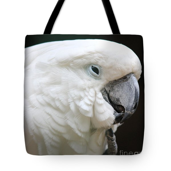 Is There Anybody Out There Tote Bag