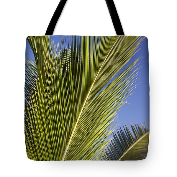 Tote Bag featuring the photograph Isabel Beach In Puerto Rico Palm Trees Against Blue Sky by Bryan Mullennix