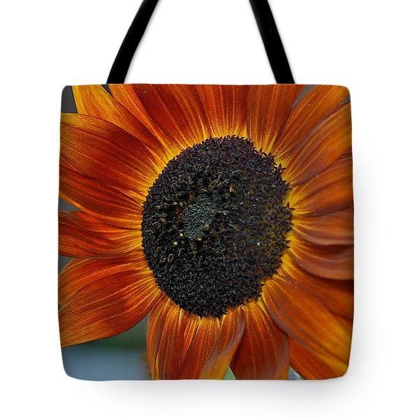 Isabella Sun Tote Bag by Joseph Yarbrough