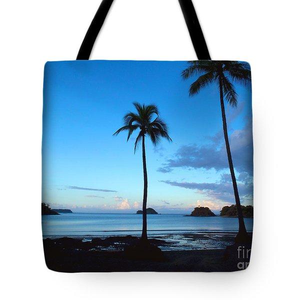 Isla Secas Tote Bag by Carey Chen