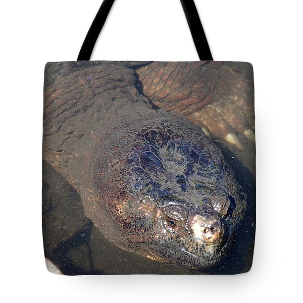 Island Turtle Tote Bag