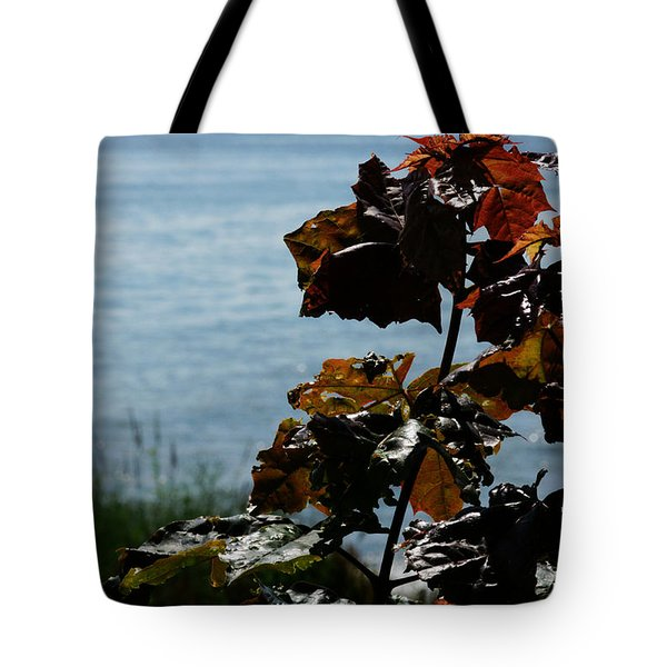 Tote Bag featuring the photograph Island View by Linda Shafer
