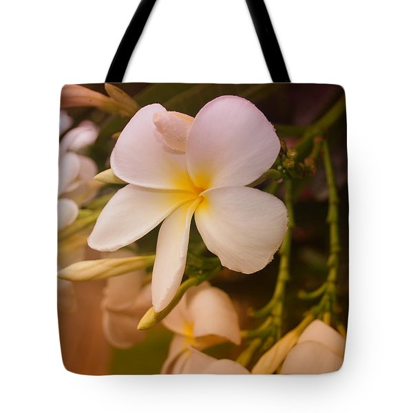 Tote Bag featuring the photograph Isle De Java by Miguel Winterpacht