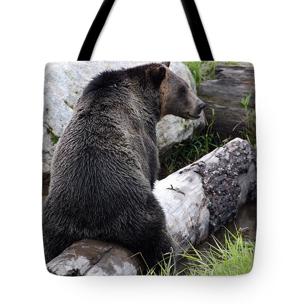 It Ain't What It May Look Like Tote Bag