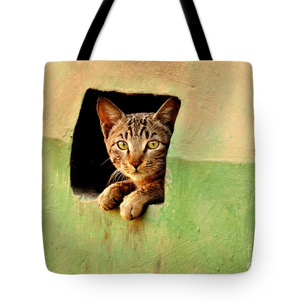 It Is My Home Tote Bag