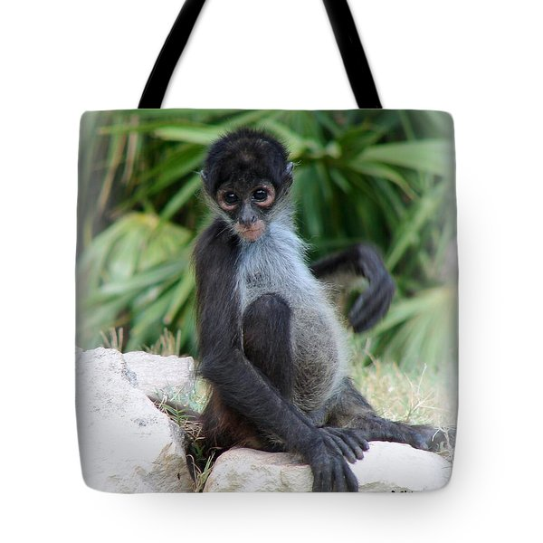 Itchy Belly Tote Bag by Patrick Witz