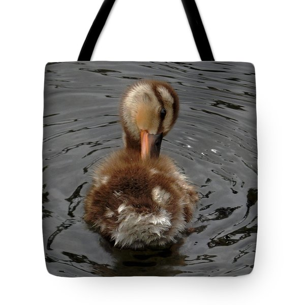 Itchy My Back Tote Bag