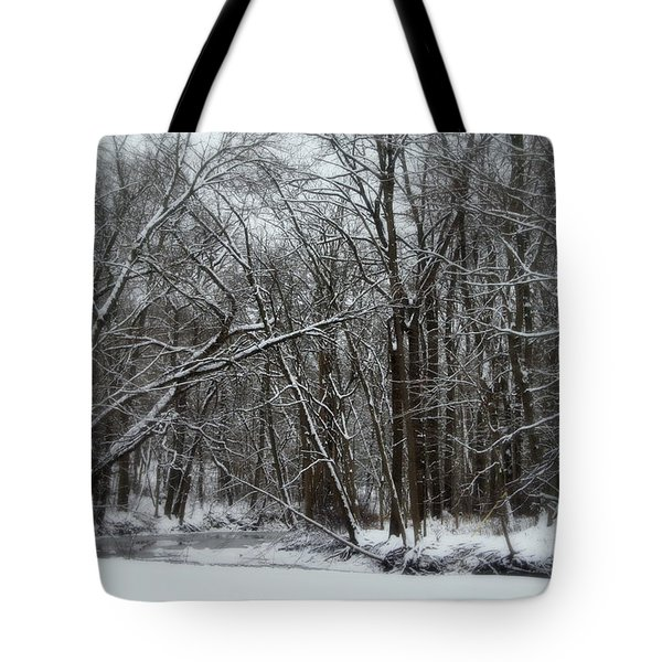 Its A Beautiful Winter Tote Bag by Kay Novy