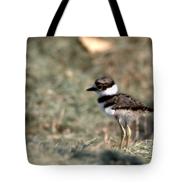 Its A Killdeer Babe Tote Bag by Skip Willits