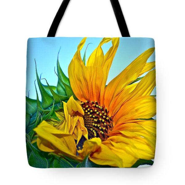 Its A New Dawn Tote Bag by Gwyn Newcombe