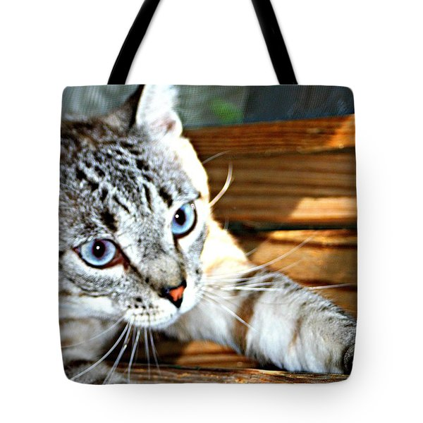 It's A Stretch Tote Bag by Barbara S Nickerson
