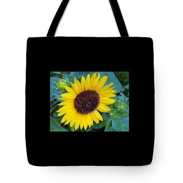 Tote Bag featuring the photograph Its A Sunny Day by Ellen Tully