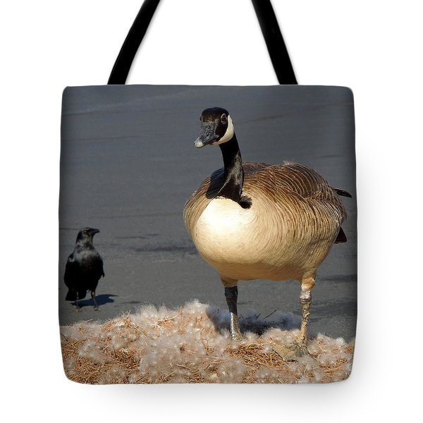 Tote Bag featuring the photograph It's Not Mine by Pete Trenholm