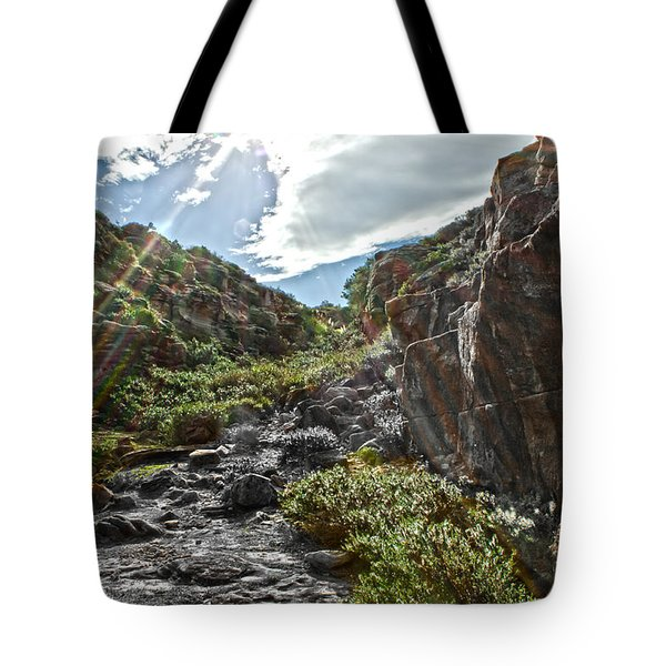Tote Bag featuring the photograph Its Raining Rainbows by Miroslava Jurcik
