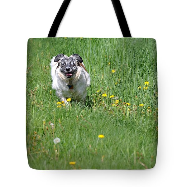 It's Spring - It's Spring Tote Bag