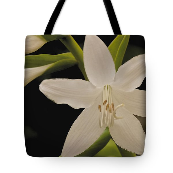 Its Summer Tote Bag by William Norton