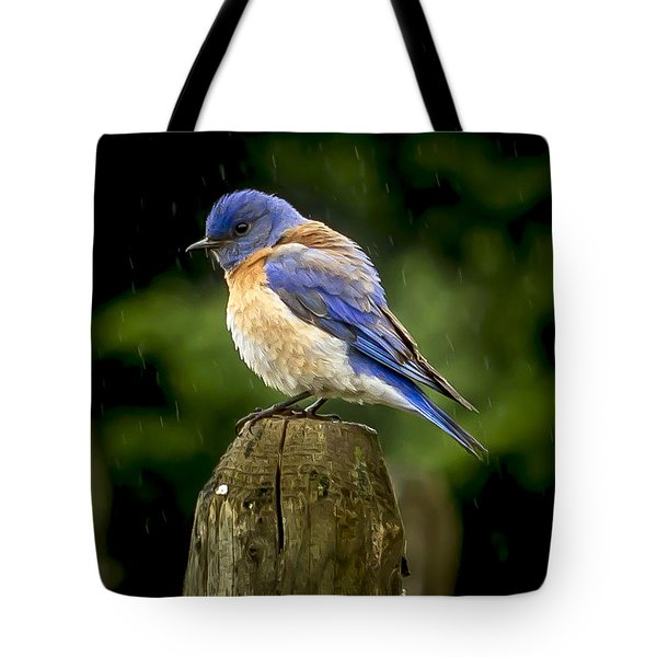 Its Wet Out Here Tote Bag by Jean Noren