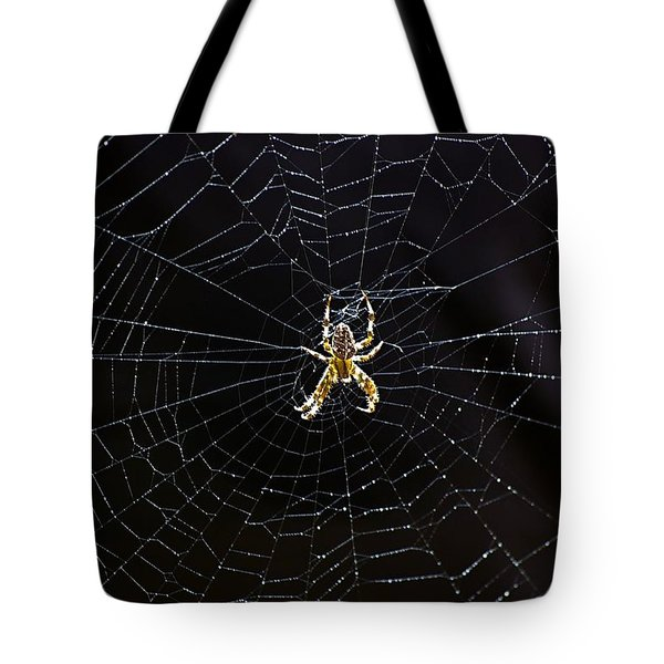 Itsy Bitsy Spider My Ass 2 Tote Bag by Steve Harrington