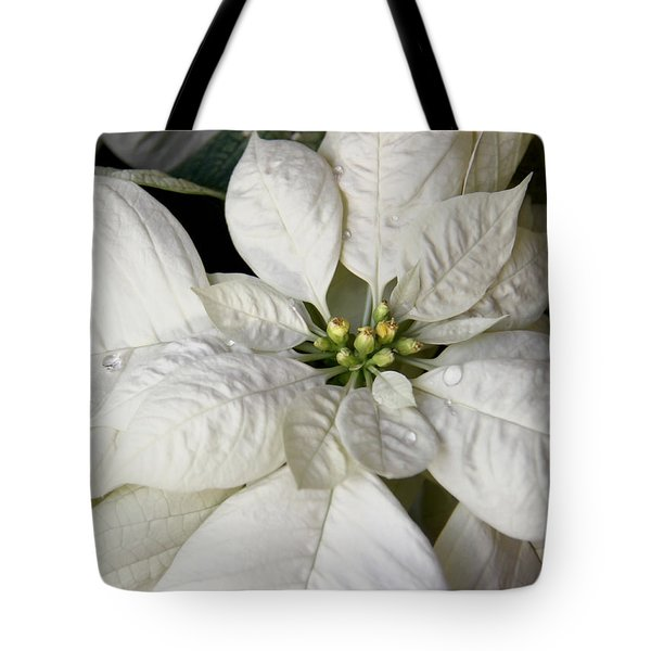 Ivory Poinsettia Christmas Flower Tote Bag by Jennie Marie Schell