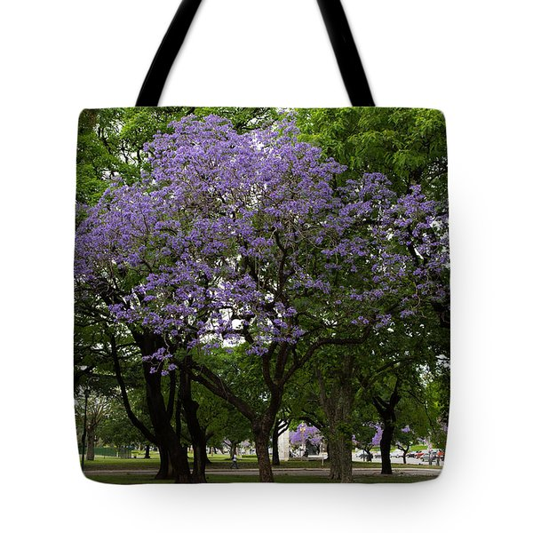 Jacaranda In The Park Tote Bag