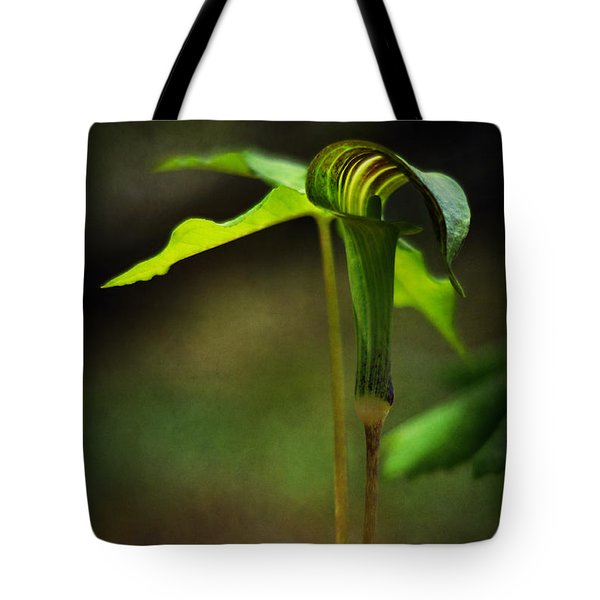 Jack-in-the-pulpit Tote Bag by Rebecca Sherman