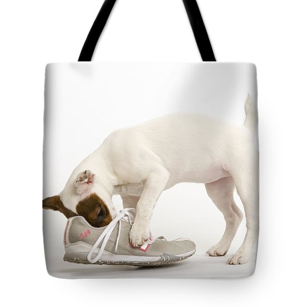 Jack Russell With Sneaker Tote Bag