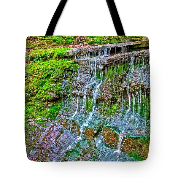 Jackson Falls At Mile 405 Natchez Trace Parkway-tennessee Tote Bag by Ruth Hager