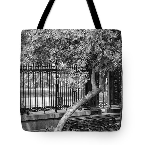 Jackson Square Bench And Tree Tote Bag