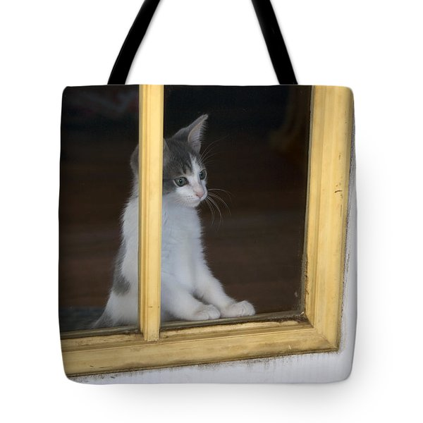 Jackson The Inquisitive Kitty Tote Bag by Thomas Woolworth
