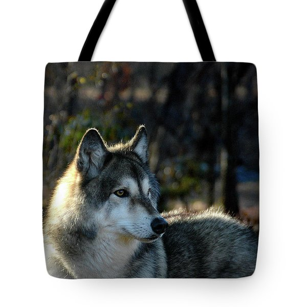 Tote Bag featuring the photograph Jacoba by Jill Westbrook