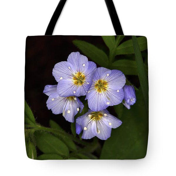 Tote Bag featuring the photograph Jacobs Ladder by Alan Vance Ley