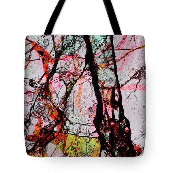 Jacob's Ladder Tote Bag