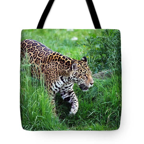 Jaguar On The Prowl Tote Bag