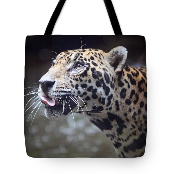 Tote Bag featuring the photograph Jaguar Sticking Out Tongue by Shoal Hollingsworth
