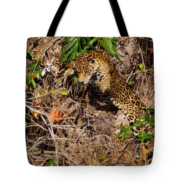 Jaguar Vs Caiman 2 Tote Bag
