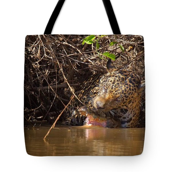 Jaguar Vs Caiman Tote Bag