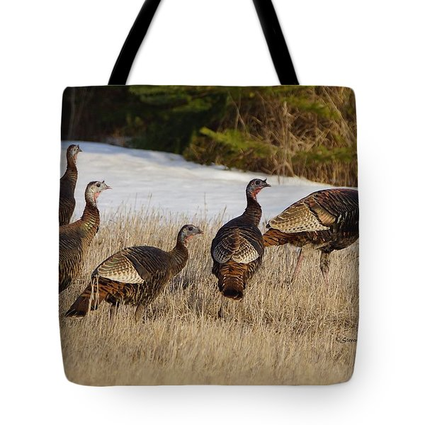 Jake's And Hen's Tote Bag by Steven Clipperton