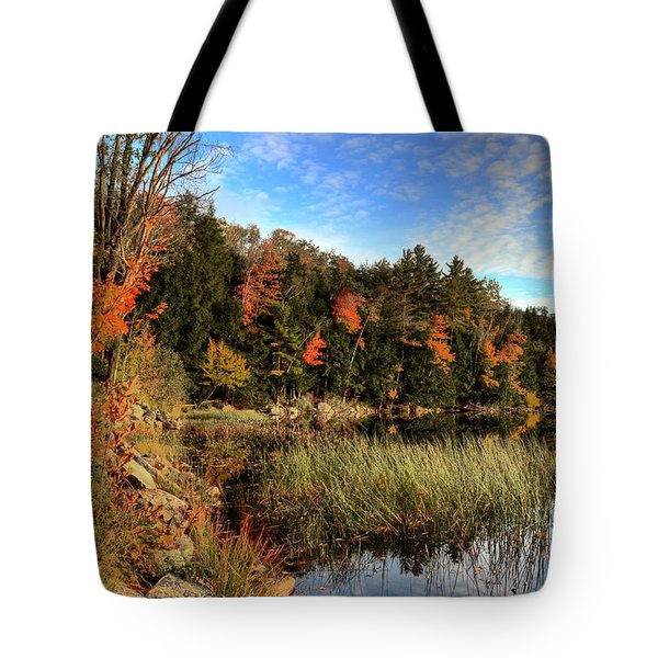 Jamies Pond 2 Tote Bag