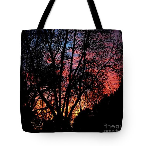 Tote Bag featuring the photograph January Dawn by Luther Fine Art