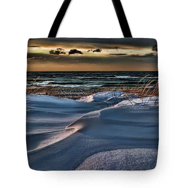 January Saugatuck Blues Michigan Tote Bag