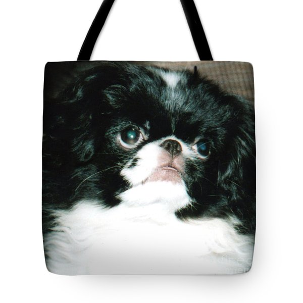 Tote Bag featuring the photograph Japanese Chin Puppy Portrait by Jim Fitzpatrick