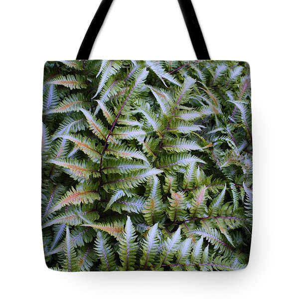 Tote Bag featuring the photograph Japanese Ferns by Kathryn Meyer