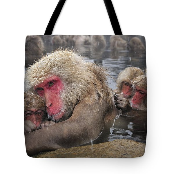 Tote Bag featuring the photograph Japanese Macaque Grooming Mother by Thomas Marent