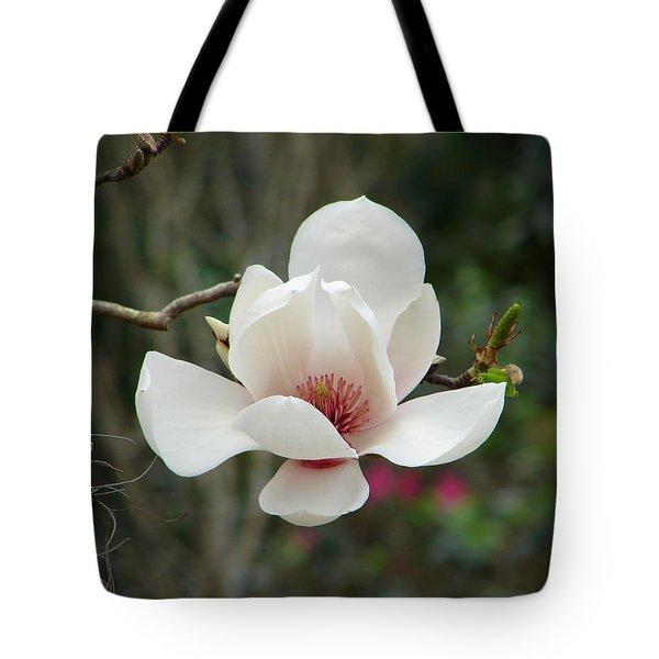 Japanese Magnolia Tote Bag by Lew Davis