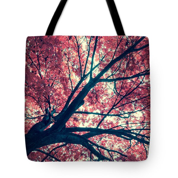 Japanese Maple - Vintage Tote Bag by Hannes Cmarits